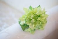 Hortenzia zöld színben 23 cm-es