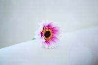 Egyszálas gerbera pink 45 cm-es