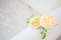 Angol rózsa sárga színben