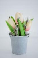 Vintage bádog vödrös, krém tulipános asztalidísz 14x9cm