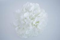 Hortenzia fej 19 cm fehér