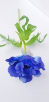 Szellőrózsa 37cm kék