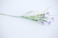 Réti virág 40 lila