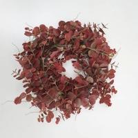 Eukaliptusz koszorú 50cm