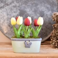 Zöld színű lepkés, ovális formájú kaspó, krém bordó tulipánnal