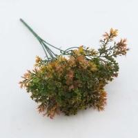 Apró virágú őszi zöld 27cm