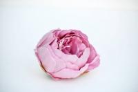 Peoniafej 8x6cm rózsaszín