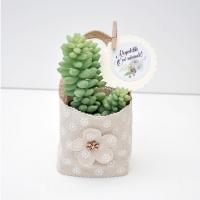 Bézs natur lenvászon kistáska pozsgás cserepes növénnyel, Óvó néninek 11x6 cm
